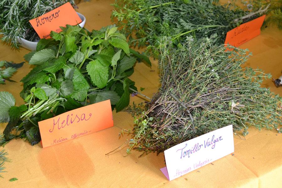 Mercado da Verdura @ Rúa Sanz, Tui | Tui | Galicia | España